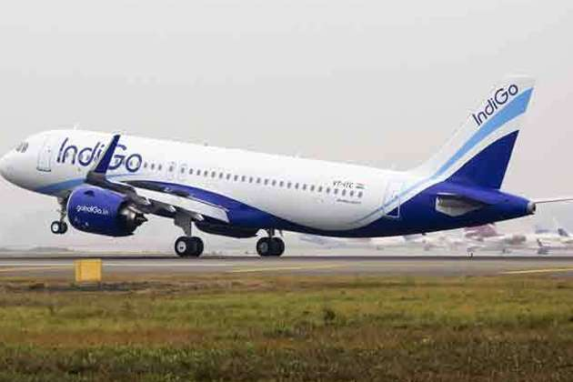 biz-indigo-to-start-delhi-istanbul-flight-from-mar